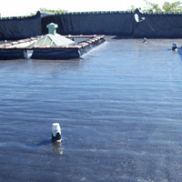 Residential Flat Roofing Contractor Edina